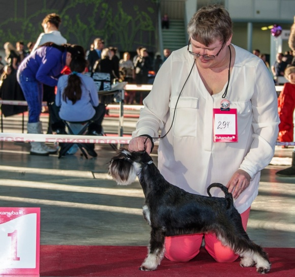 National Dog Show of all breeds memory LP Sabaneyeva (CAC, CH RKF)
